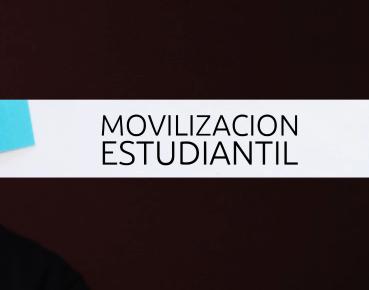 MOVILIZACIÓN ESTUDIANTIL: LA MIRADA ACADÉMICA.